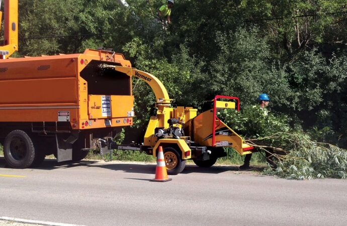 Commercial Tree Services-Pompano Beach FL Tree Trimming and Stump Grinding Services-We Offer Tree Trimming Services, Tree Removal, Tree Pruning, Tree Cutting, Residential and Commercial Tree Trimming Services, Storm Damage, Emergency Tree Removal, Land Clearing, Tree Companies, Tree Care Service, Stump Grinding, and we're the Best Tree Trimming Company Near You Guaranteed!