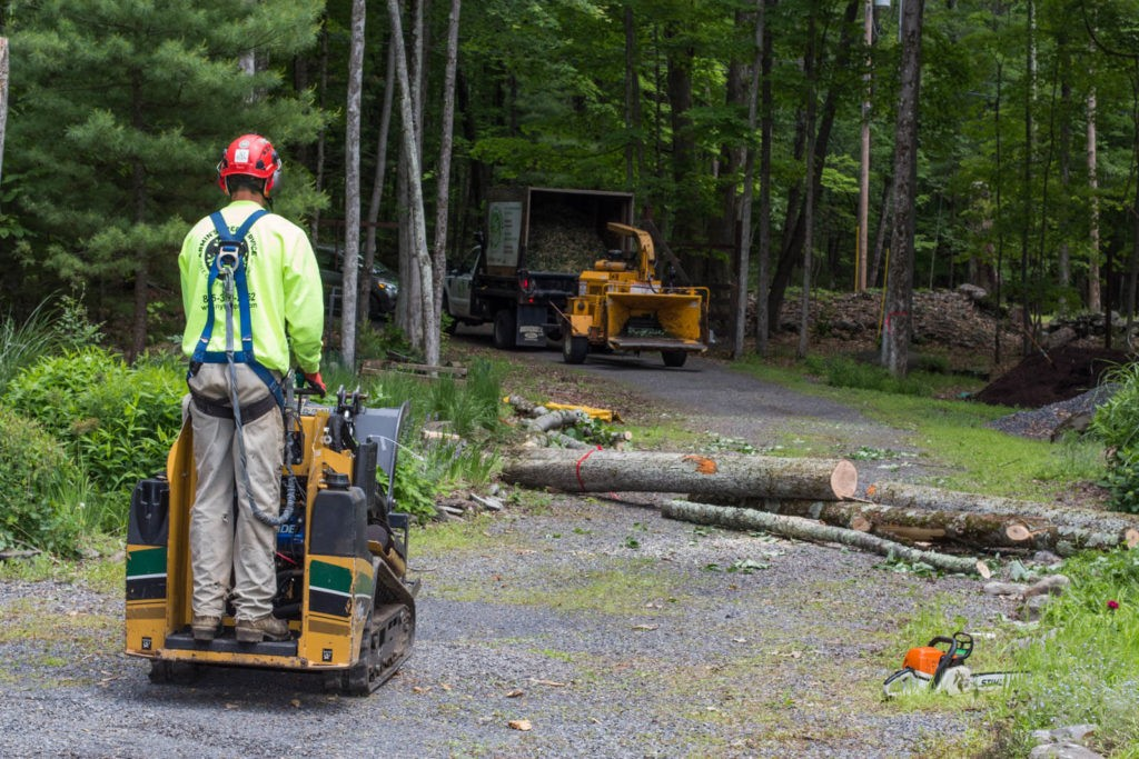 Emergency Tree Removal-Pompano Beach FL Tree Trimming and Stump Grinding Services-We Offer Tree Trimming Services, Tree Removal, Tree Pruning, Tree Cutting, Residential and Commercial Tree Trimming Services, Storm Damage, Emergency Tree Removal, Land Clearing, Tree Companies, Tree Care Service, Stump Grinding, and we're the Best Tree Trimming Company Near You Guaranteed!