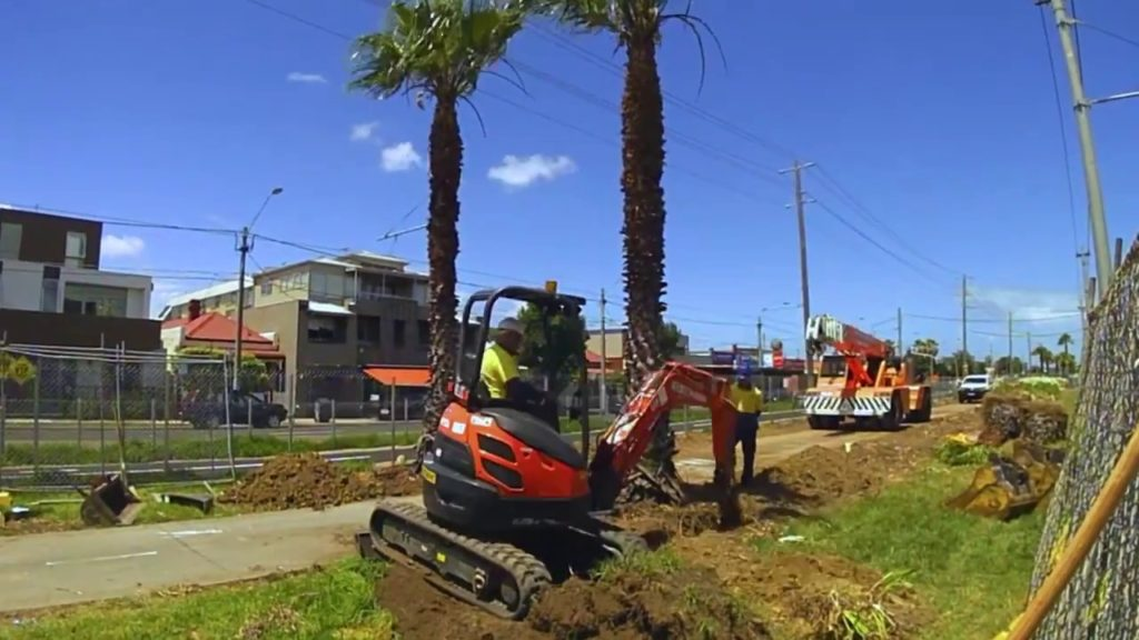 Palm Tree Removal-Pompano Beach FL Tree Trimming and Stump Grinding Services-We Offer Tree Trimming Services, Tree Removal, Tree Pruning, Tree Cutting, Residential and Commercial Tree Trimming Services, Storm Damage, Emergency Tree Removal, Land Clearing, Tree Companies, Tree Care Service, Stump Grinding, and we're the Best Tree Trimming Company Near You Guaranteed!