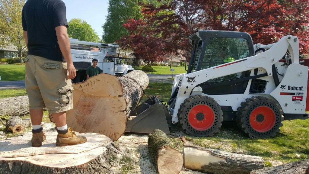 Services-Pompano Beach FL Tree Trimming and Stump Grinding Services-We Offer Tree Trimming Services, Tree Removal, Tree Pruning, Tree Cutting, Residential and Commercial Tree Trimming Services, Storm Damage, Emergency Tree Removal, Land Clearing, Tree Companies, Tree Care Service, Stump Grinding, and we're the Best Tree Trimming Company Near You Guaranteed!