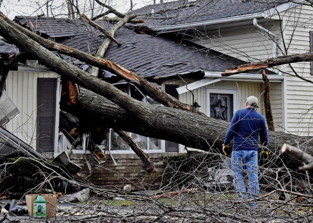 Storm Damage-Pompano Beach FL Tree Trimming and Stump Grinding Services-We Offer Tree Trimming Services, Tree Removal, Tree Pruning, Tree Cutting, Residential and Commercial Tree Trimming Services, Storm Damage, Emergency Tree Removal, Land Clearing, Tree Companies, Tree Care Service, Stump Grinding, and we're the Best Tree Trimming Company Near You Guaranteed!